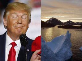 President Trump wants to buy Greenland, is it true?