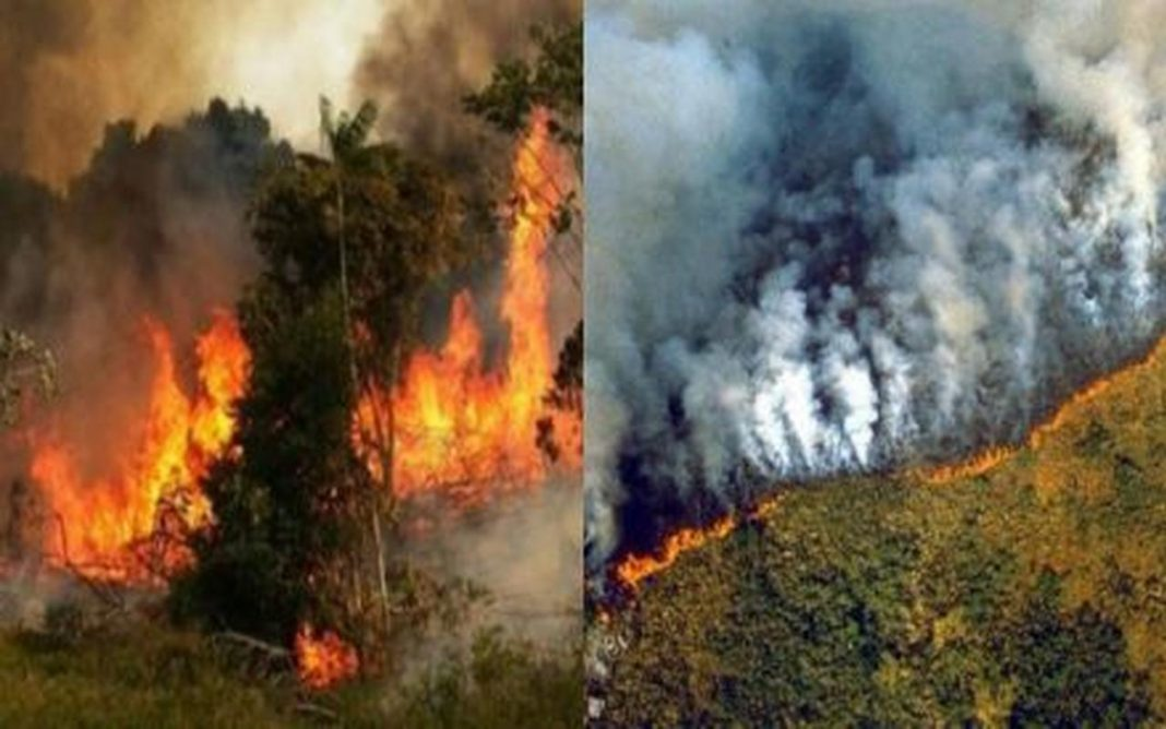 Break down of the Amazon rainforest fires